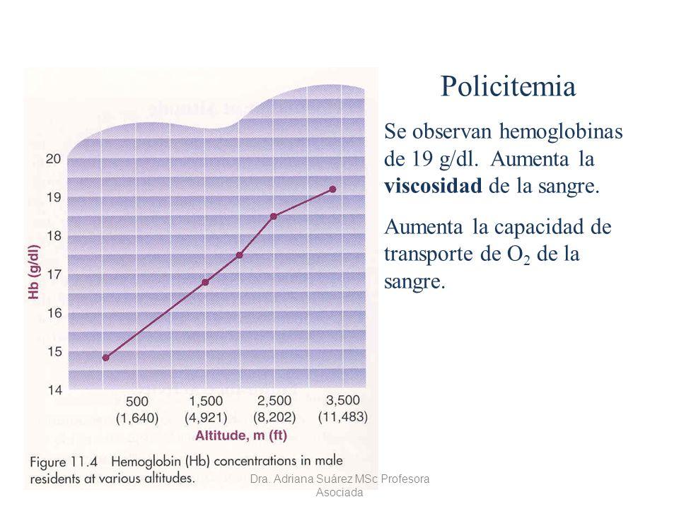 Policitemia Se observan hemoglobinas de 19 g/dl. Aumenta la viscosidad de la sangre. Aumenta la capacidad de transporte de O 2 de la sangre. Dra. Adri