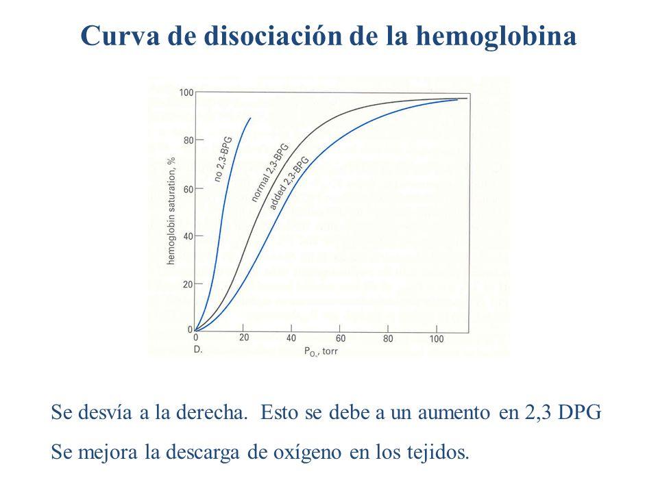 Curva de disociación de la hemoglobina Se desvía a la derecha. Esto se debe a un aumento en 2,3 DPG Se mejora la descarga de oxígeno en los tejidos.