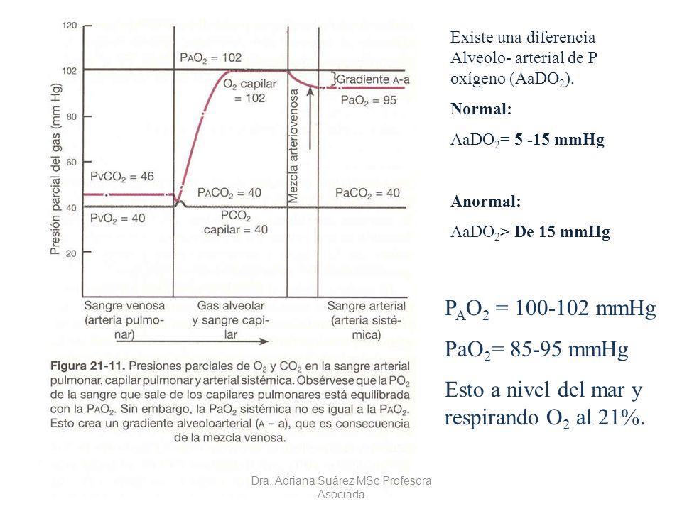 Existe una diferencia Alveolo- arterial de P oxígeno (AaDO 2 ). Normal: AaDO 2 = 5 -15 mmHg Anormal: AaDO 2 > De 15 mmHg P A O 2 = 100-102 mmHg PaO 2