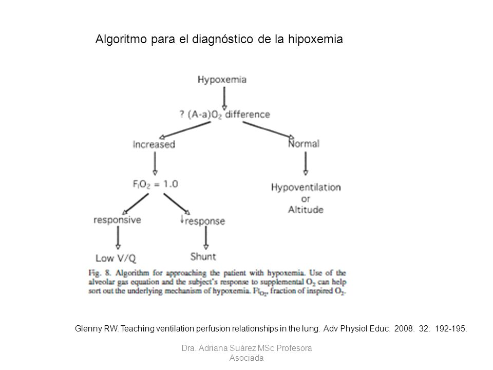 Glenny RW. Teaching ventilation perfusion relationships in the lung. Adv Physiol Educ. 2008. 32: 192-195. Algoritmo para el diagnóstico de la hipoxemi