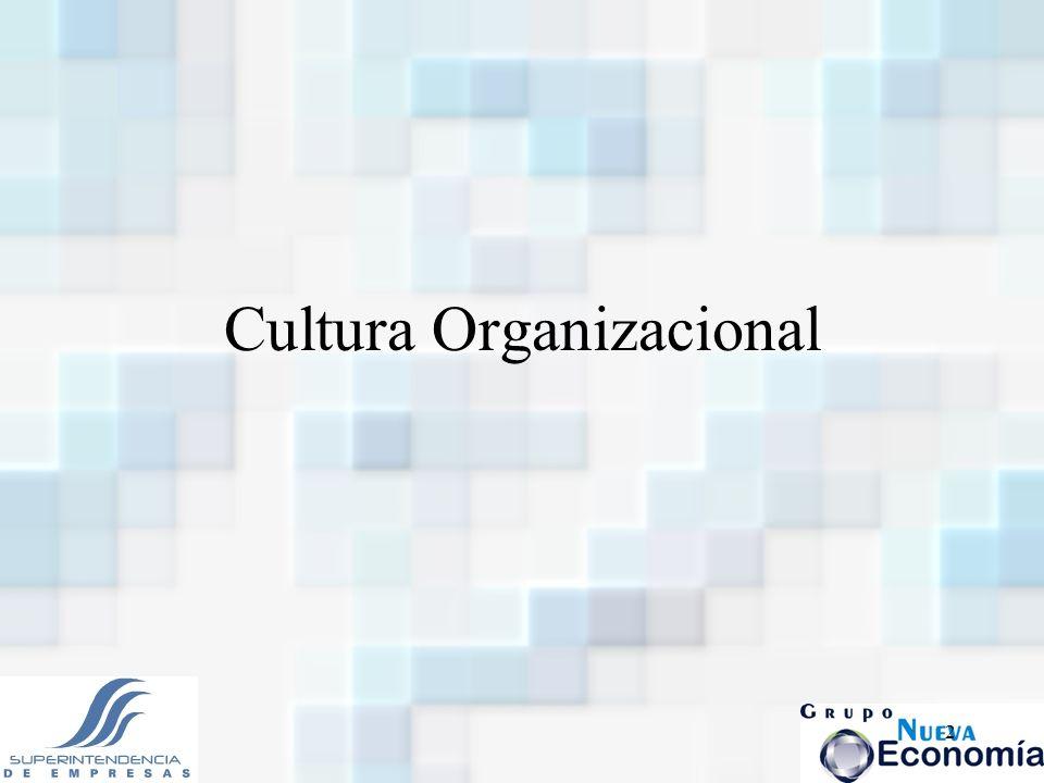 2 Cultura Organizacional