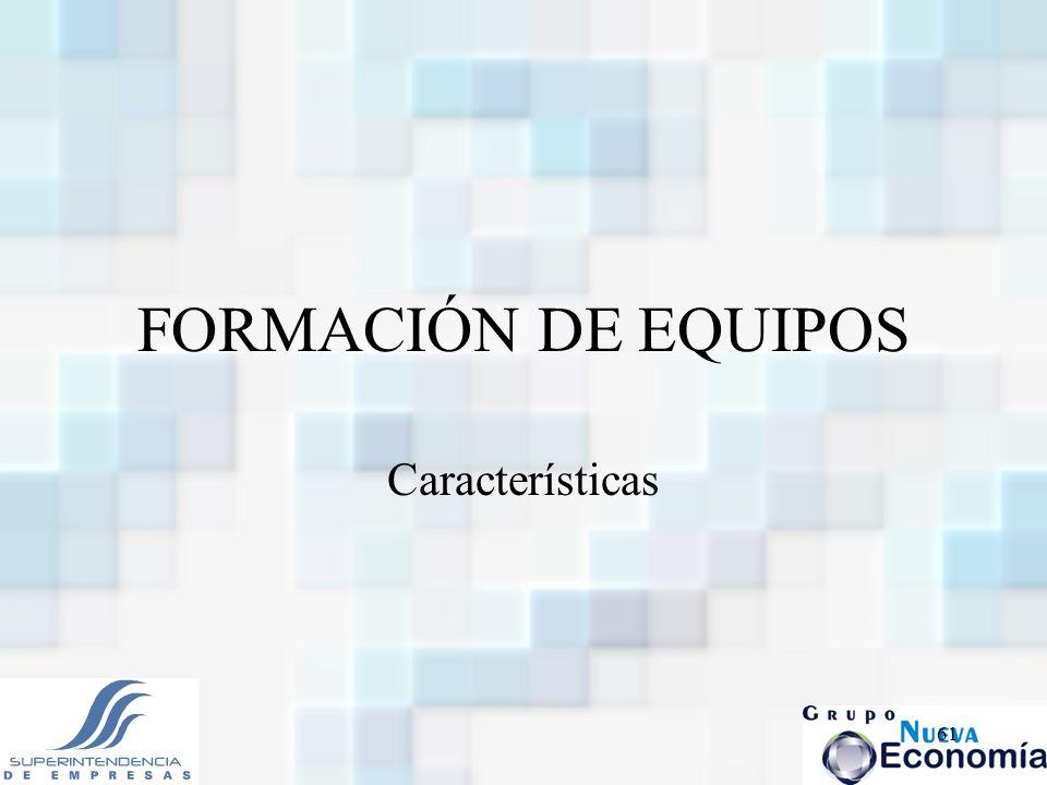 61 FORMACIÓN DE EQUIPOS Características