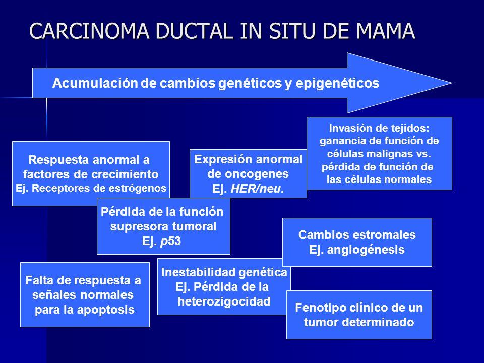 Acumulación de cambios genéticos y epigenéticos CARCINOMA DUCTAL IN SITU DE MAMA Respuesta anormal a factores de crecimiento Ej. Receptores de estróge