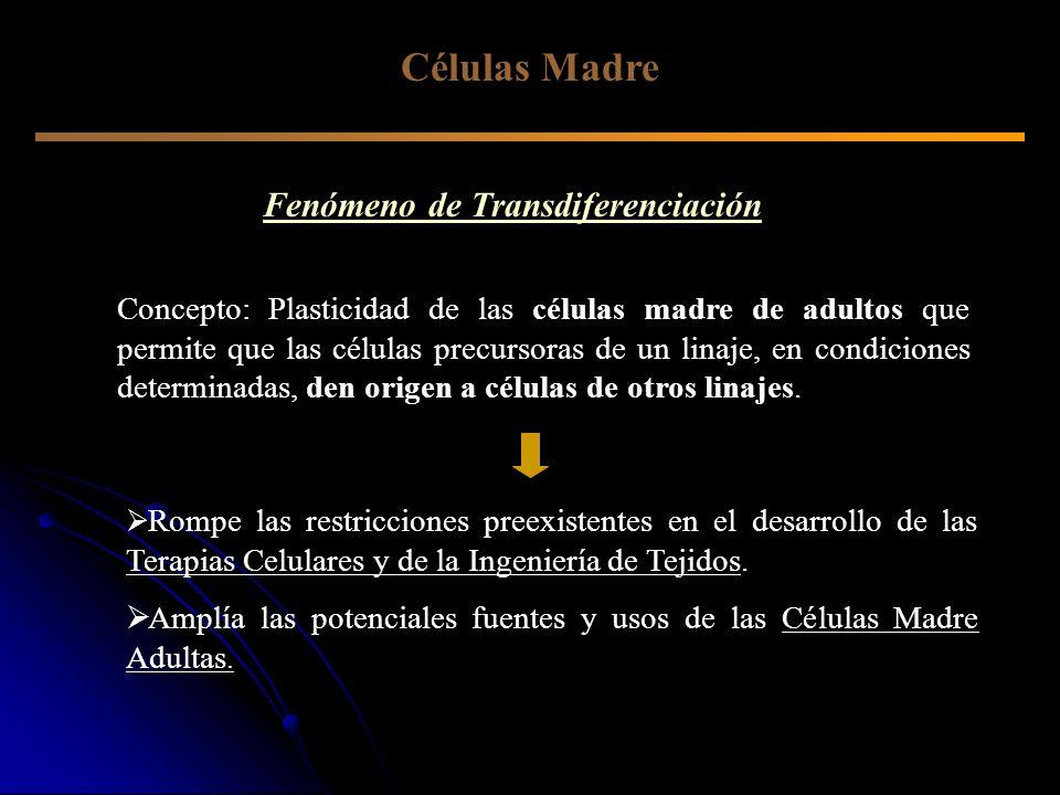 Células Madre Fenómeno de Transdiferenciación Concepto: Plasticidad de las células madre de adultos que permite que las células precursoras de un lina