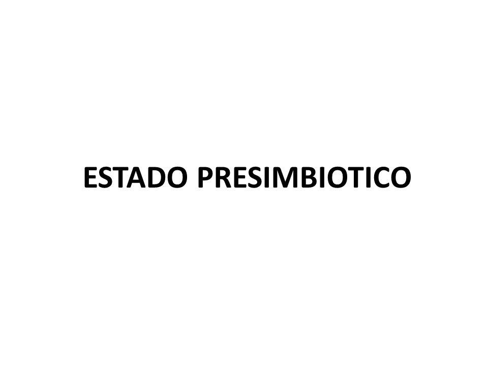 ESTADO PRESIMBIOTICO