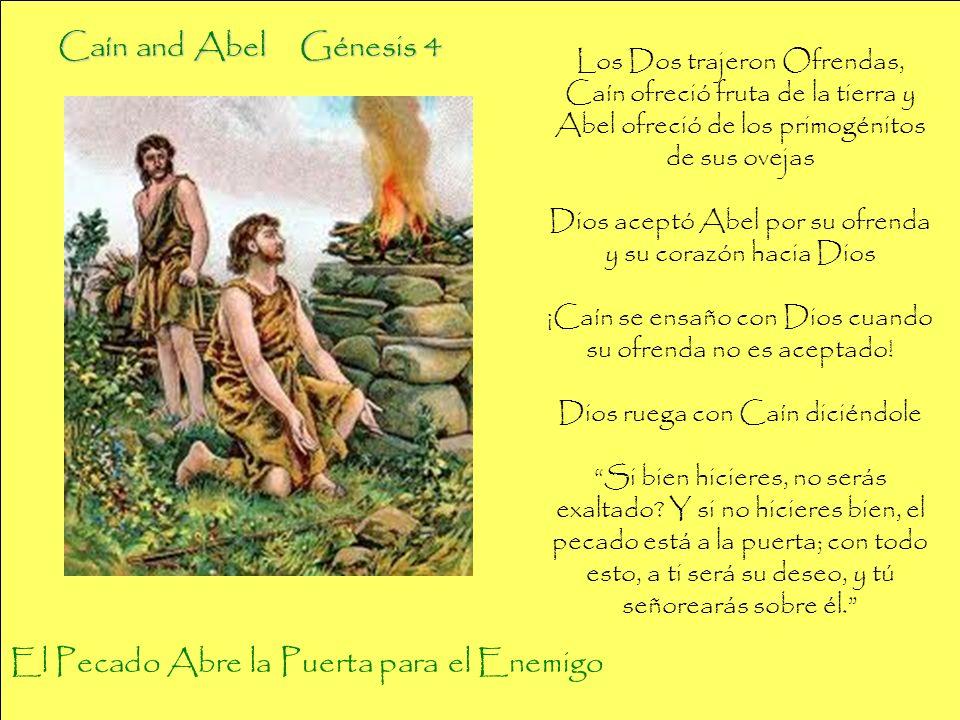 Los Dos trajeron Ofrendas, Caín ofreció fruta de la tierra y Abel ofreció de los primogénitos de sus ovejas Dios aceptó Abel por su ofrenda y su coraz