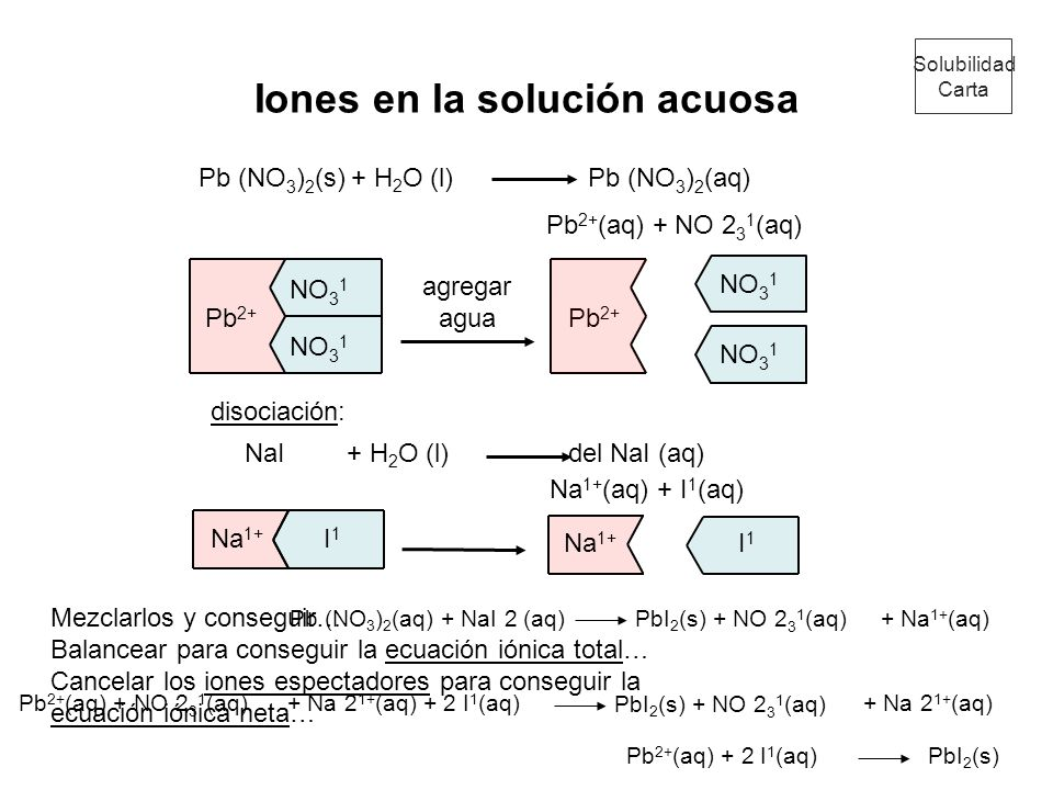 Pb 2+ NO 3 1 Na 1+ I1 I1 Pb 2+ I1 I1 Iones en la solución acuosa Pb (NO 3 ) 2 (s) Pb (NO 3 ) 2 (aq) Pb 2+ (aq) + NO 2 3 1 (aq) agregar agua NaI del Na