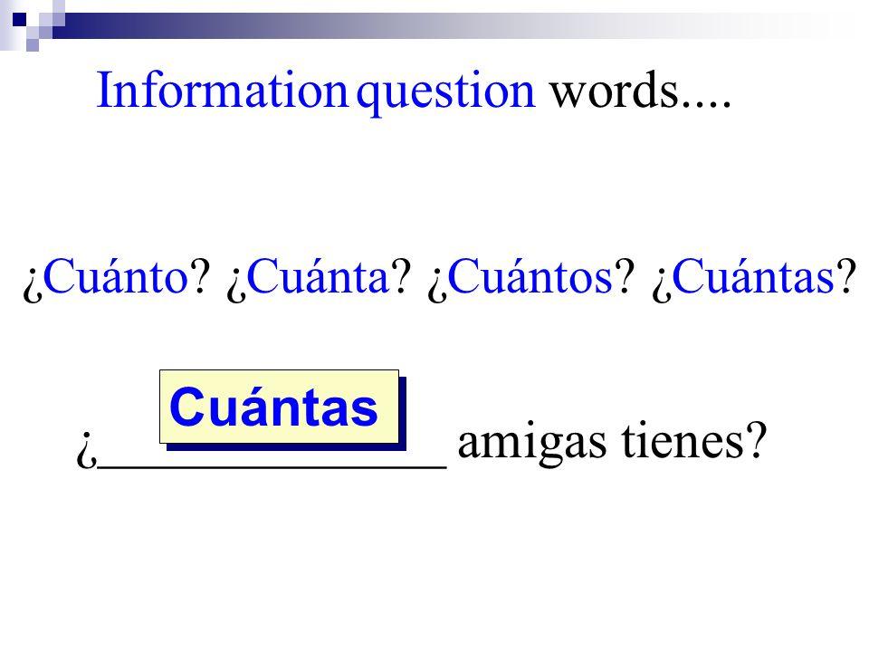 ¿Cuánto? ¿Cuánta? ¿Cuántos? ¿Cuántas? ¿_____________ amigas tienes? Cuántas Information question words....