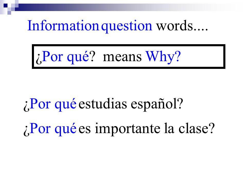 ¿Por qué es importante la clase? Information question words.... ¿Por qué? means Why? ¿Por qué estudias español?