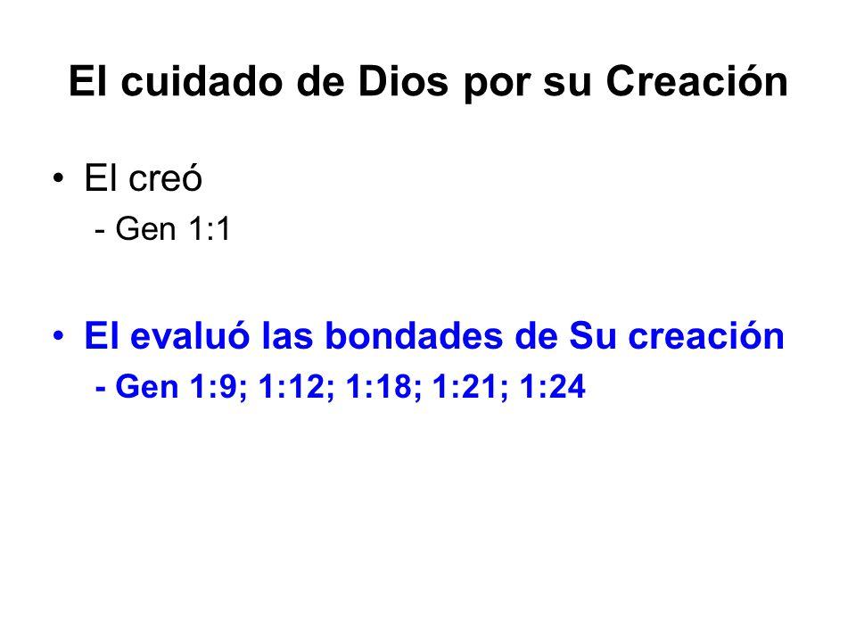 El cuidado de Dios por su Creación El creó - Gen 1:1 El evaluó las bondades de Su creación - Gen 1:9; 1:12; 1:18; 1:21; 1:24