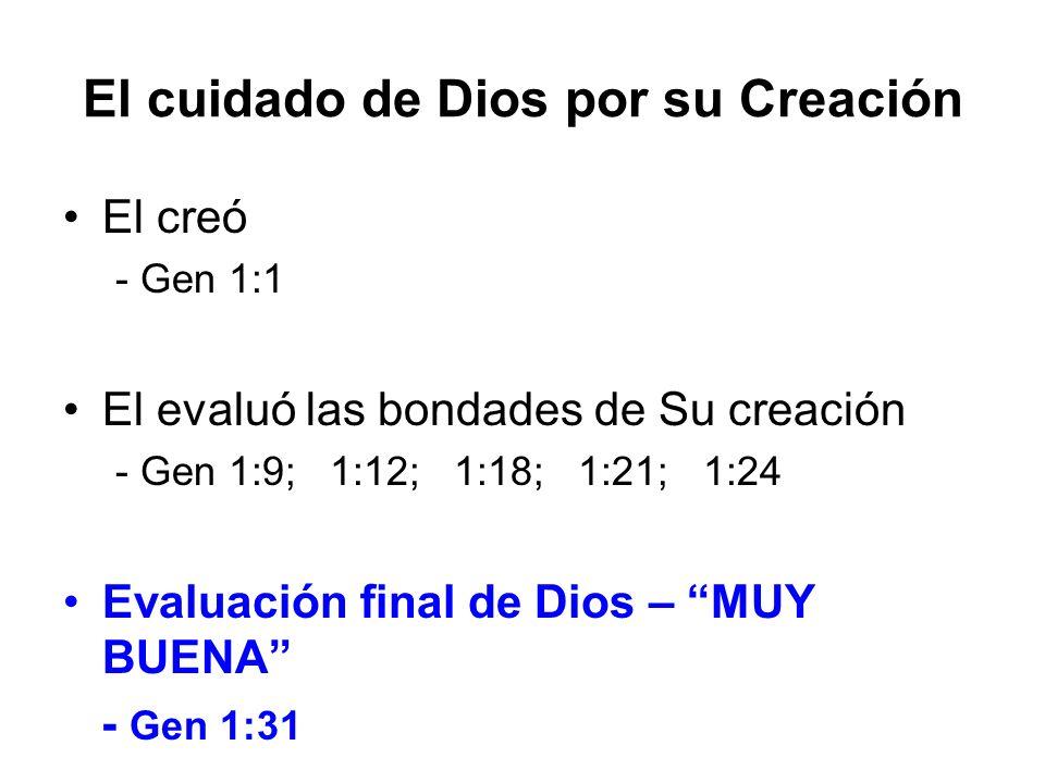 El cuidado de Dios por su Creación El creó - Gen 1:1 El evaluó las bondades de Su creación - Gen 1:9; 1:12; 1:18; 1:21; 1:24 Evaluación final de Dios