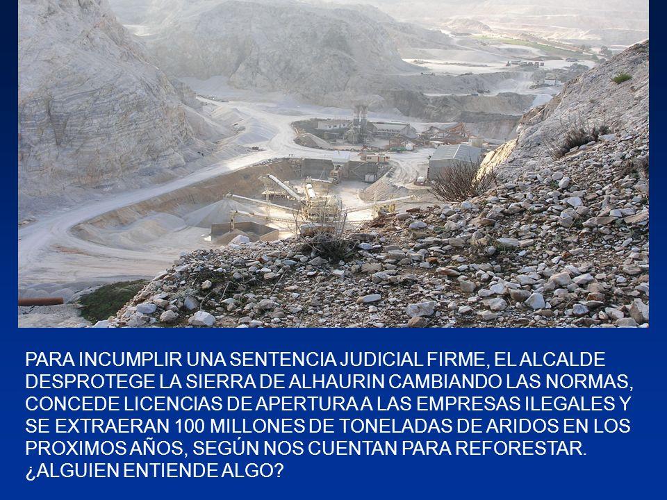 SE HAN DESTRUIDO 3 MILLONES DE ÁRBOLES EN UNA SIERRA CON ALTOS VALORES ECOLOGICOS Y FAUNÍSTICOS.