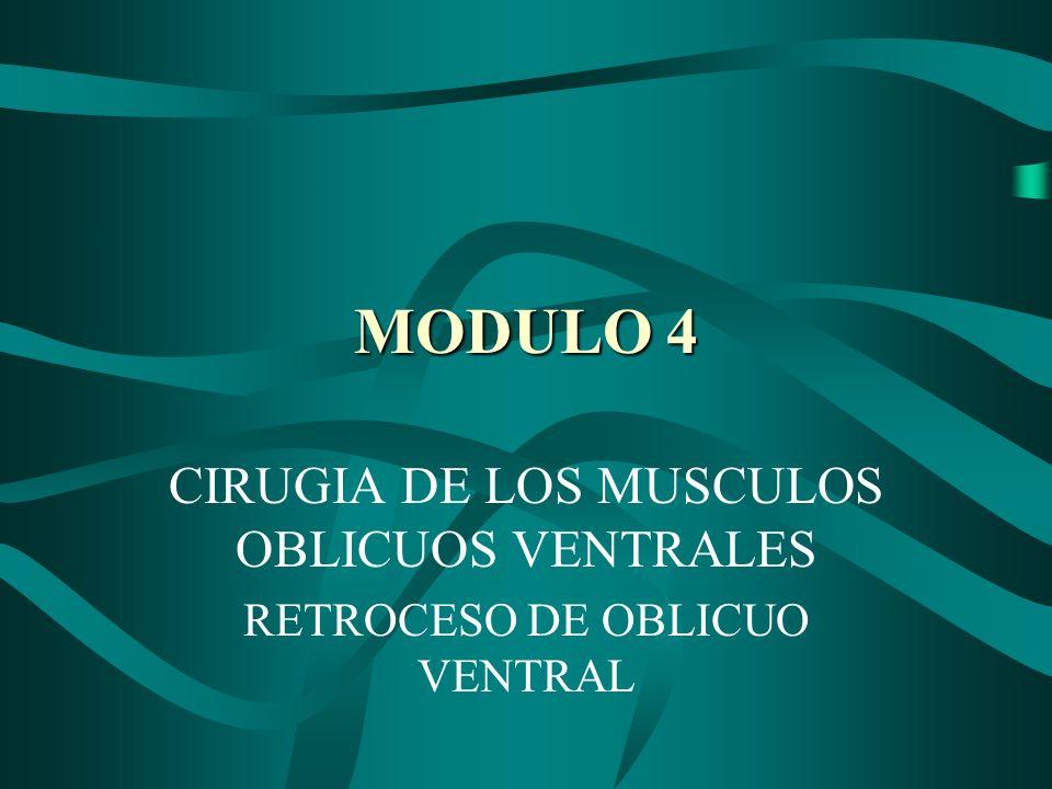MODULO 4 CIRUGIA DE LOS MUSCULOS OBLICUOS VENTRALES RETROCESO DE OBLICUO VENTRAL