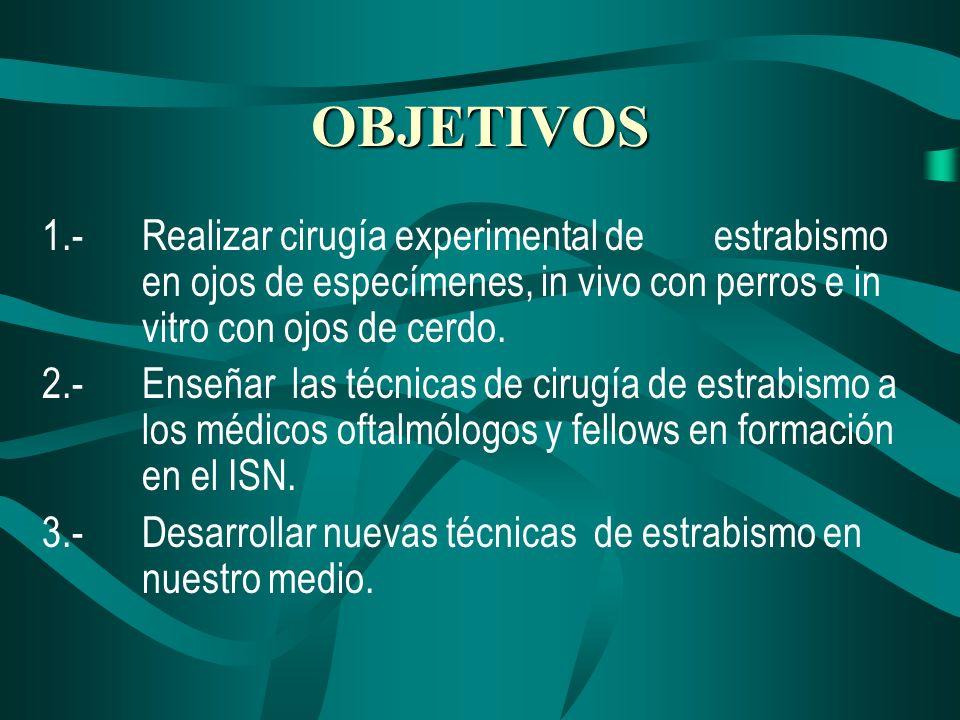 OBJETIVOS 1.-Realizar cirugía experimental de estrabismo en ojos de especímenes, in vivo con perros e in vitro con ojos de cerdo. 2.-Enseñar las técni