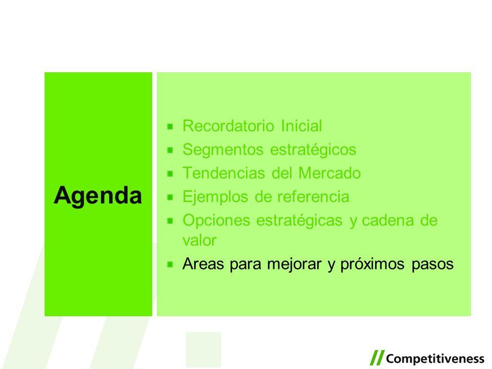 Recordatorio Inicial Segmentos estratégicos Tendencias del Mercado Ejemplos de referencia Opciones estratégicas y cadena de valor Areas para mejorar y
