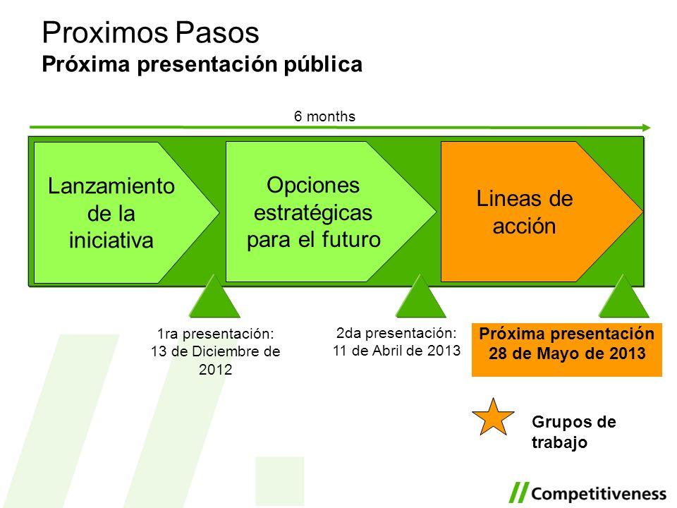 Opciones estratégicas para el futuro Lineas de acción Lanzamiento de la iniciativa 1ra presentación: 13 de Diciembre de 2012 Proximos Pasos Próxima pr