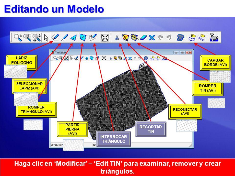 Editando un Modelo Haga clic en Modificar – Edit TIN para examinar, remover y crear triángulos. ROMPER TRIANGULO (AVI) LAPIZ POLIGONO (AVI) SELECCIONA