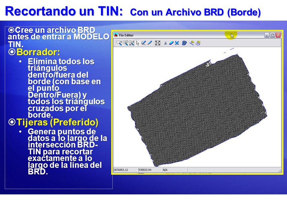 Recortando un TIN: Con un Archivo BRD (Borde) Cree un archivo BRD antes de entrar a MODELO TIN. Cree un archivo BRD antes de entrar a MODELO TIN. Borr