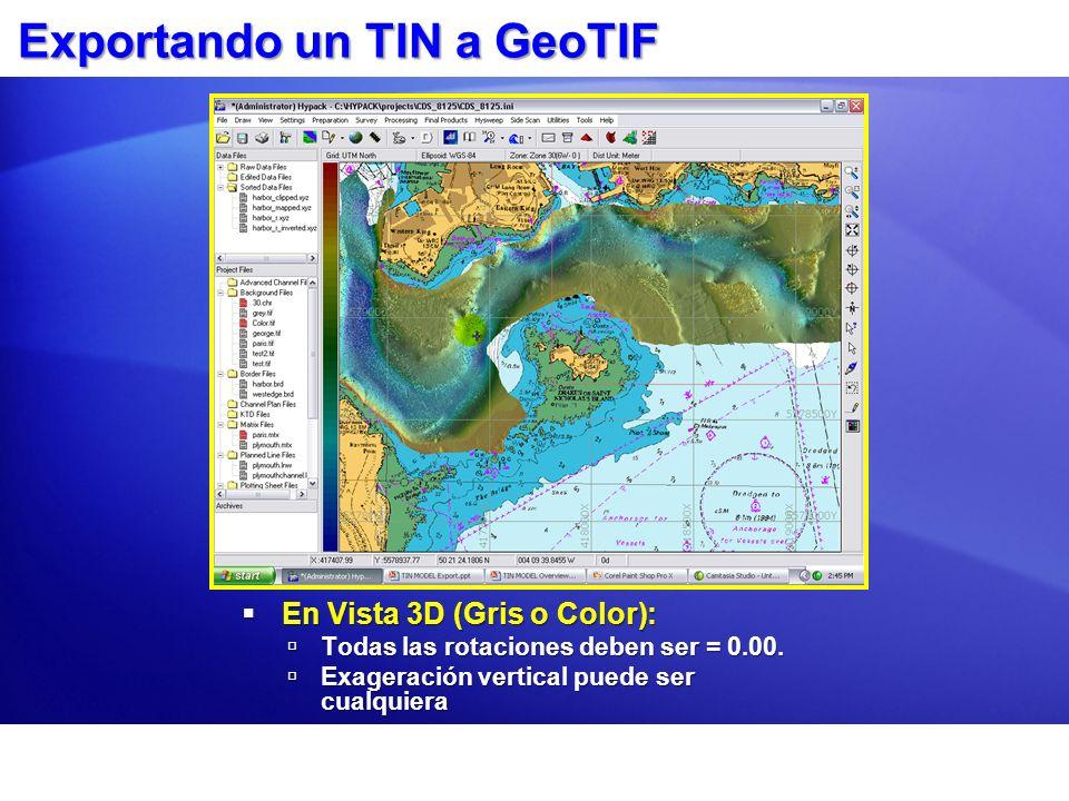 Exportando un TIN a GeoTIF En Vista 3D (Gris o Color): En Vista 3D (Gris o Color): Todas las rotaciones deben ser = 0.00. Todas las rotaciones deben s
