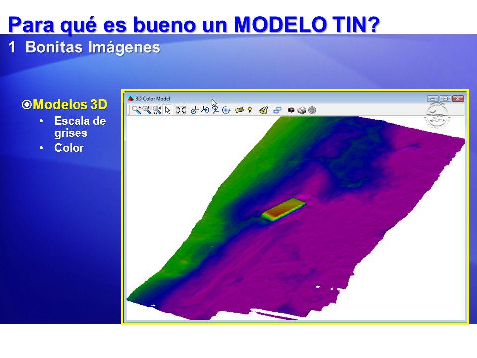 Para qué es bueno un MODELO TIN? 1 Bonitas Imágenes Modelos 3D Modelos 3D Escala de grisesEscala de grises ColorColor