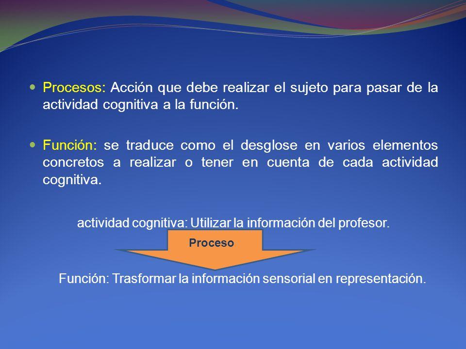 Procesos: Acción que debe realizar el sujeto para pasar de la actividad cognitiva a la función. Función: se traduce como el desglose en varios element