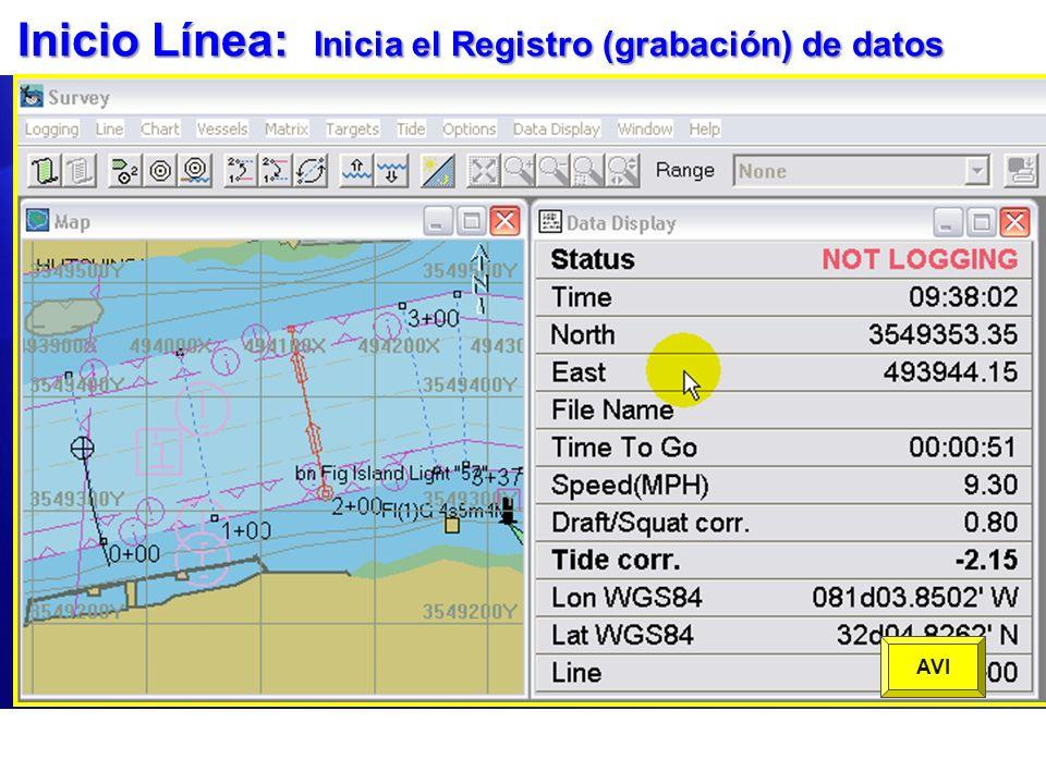 Inicio Línea: Inicia el Registro (grabación) de datos Grabación de datos solo ocurre cuando esta En Línea. Verifique el Estatus en la Ventana de Datos