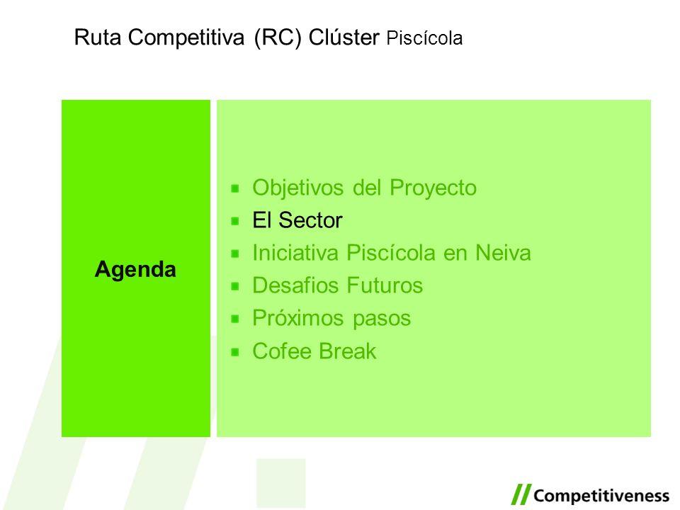 Objetivos del Proyecto El Sector Iniciativa Piscícola en Neiva Desafios Futuros Próximos pasos Cofee Break Agenda Ruta Competitiva (RC) Clúster Piscíc