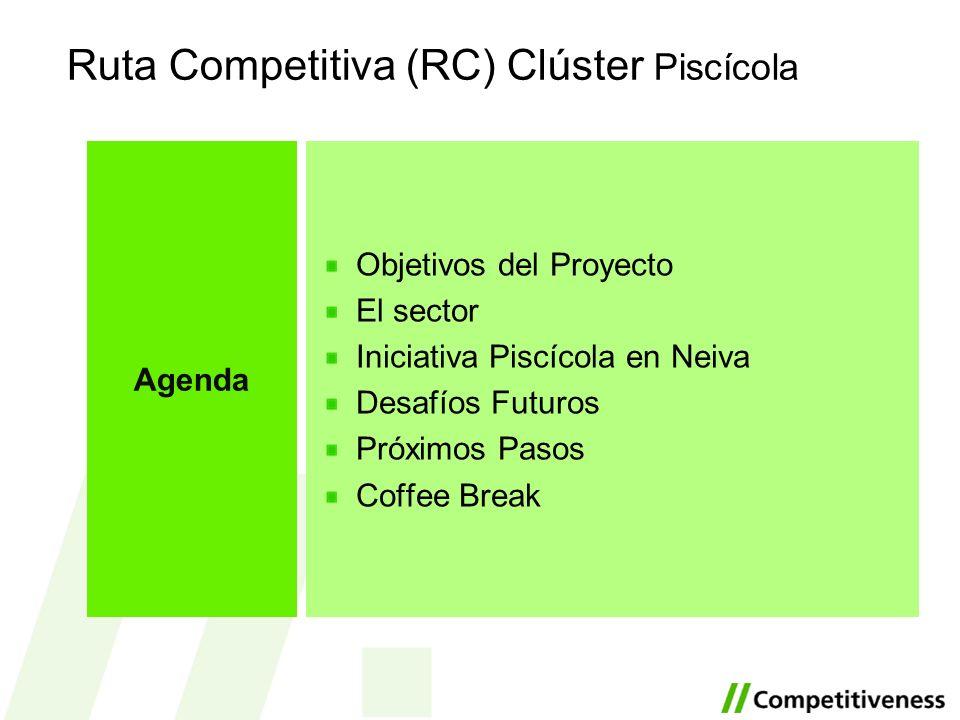 Ruta Competitiva (RC) Clúster Piscícola Objetivos del Proyecto El sector Iniciativa Piscícola en Neiva Desafíos Futuros Próximos Pasos Coffee Break Ag