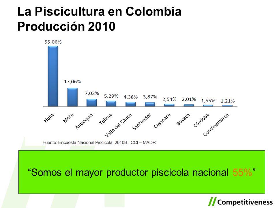 Somos el mayor productor piscicola nacional 55% La Piscicultura en Colombia Producción 2010
