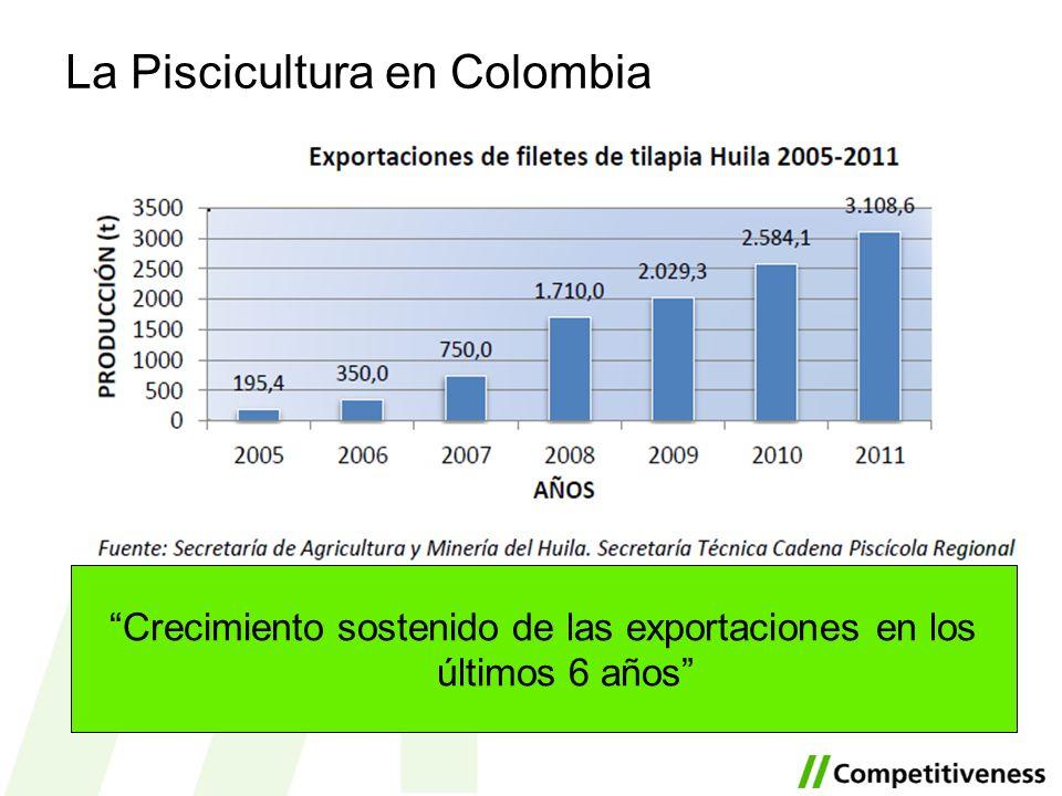Somos el mayor productor de tilapia nacional 55% La Piscicultura en Colombia Crecimiento sostenido de las exportaciones en los últimos 6 años