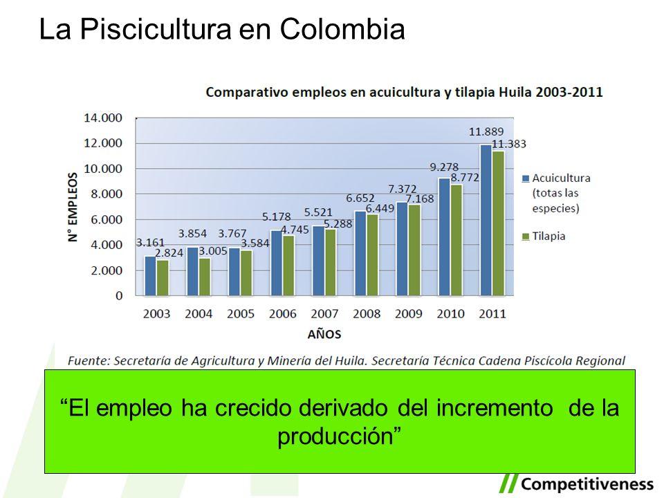 La Piscicultura en Colombia El empleo ha crecido derivado del incremento de la producción