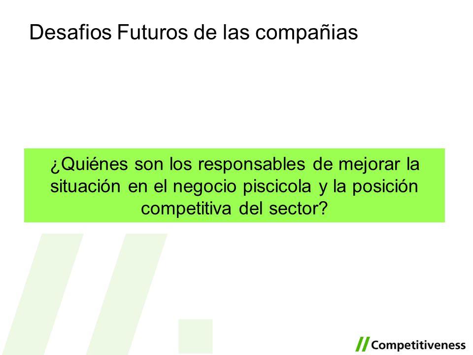 Desafios Futuros de las compañias ¿Quiénes son los responsables de mejorar la situación en el negocio piscicola y la posición competitiva del sector?