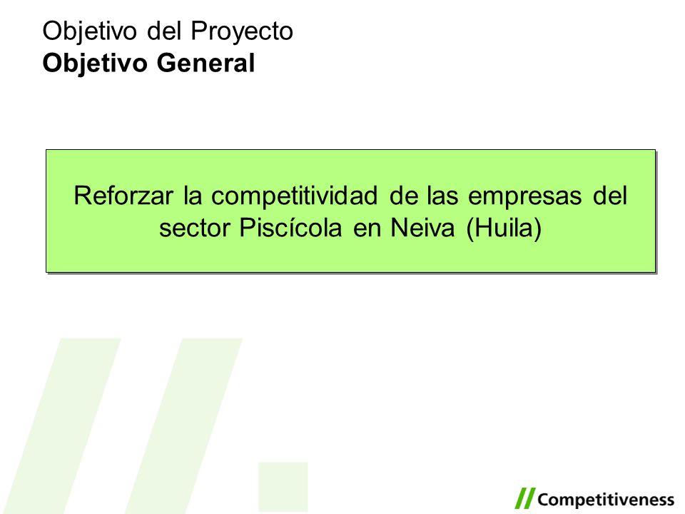 Objetivo del Proyecto Objetivo General Reforzar la competitividad de las empresas del sector Piscícola en Neiva (Huila)