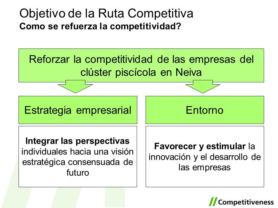Objetivo de la Ruta Competitiva Como se refuerza la competitividad? Reforzar la competitividad de las empresas del clúster piscícola en Neiva EntornoE