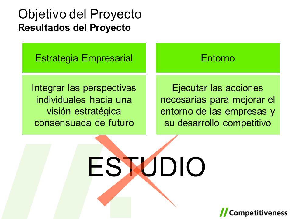 Objetivo del Proyecto Resultados del Proyecto ESTUDIO Entorno Ejecutar las acciones necesarias para mejorar el entorno de las empresas y su desarrollo