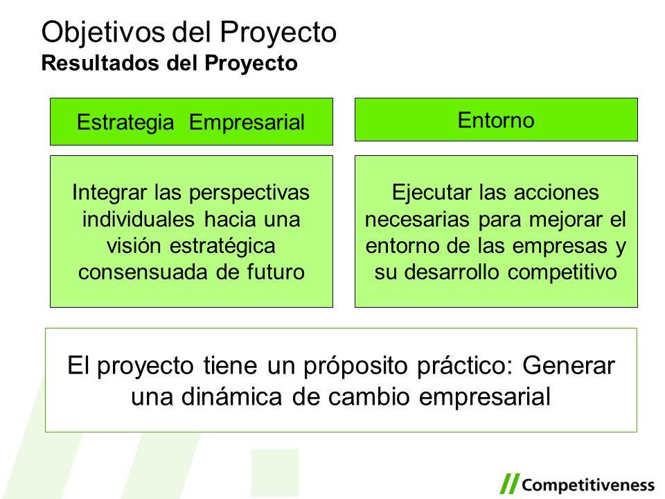 Objetivos del Proyecto Resultados del Proyecto El proyecto tiene un próposito práctico: Generar una dinámica de cambio empresarial Entorno Ejecutar la