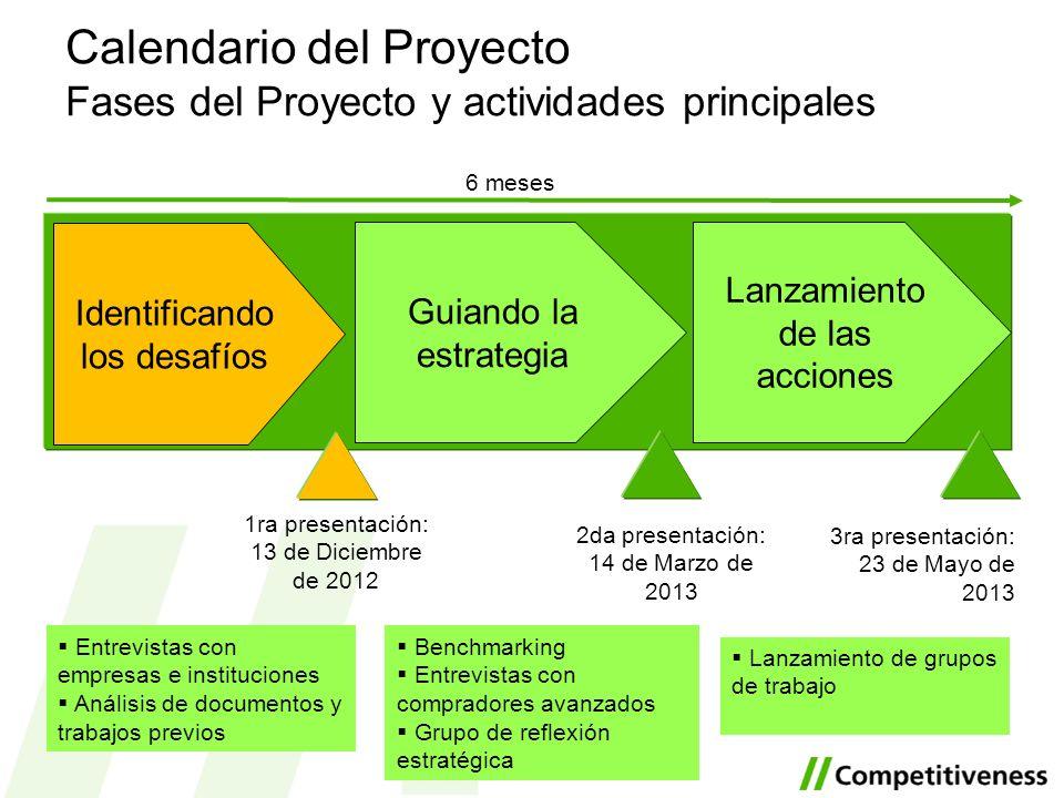 Guiando la estrategia Lanzamiento de las acciones Identificando los desafíos 6 meses 1ra presentación: 13 de Diciembre de 2012 2da presentación: 14 de