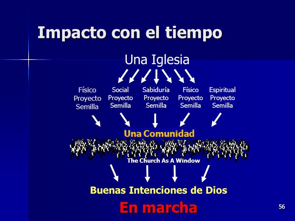56 Impacto con el tiempo One Community Physical Seed Project Una Iglesia Espiritual Proyecto Semilla Sabiduría Proyecto Semilla Social Proyecto Semill