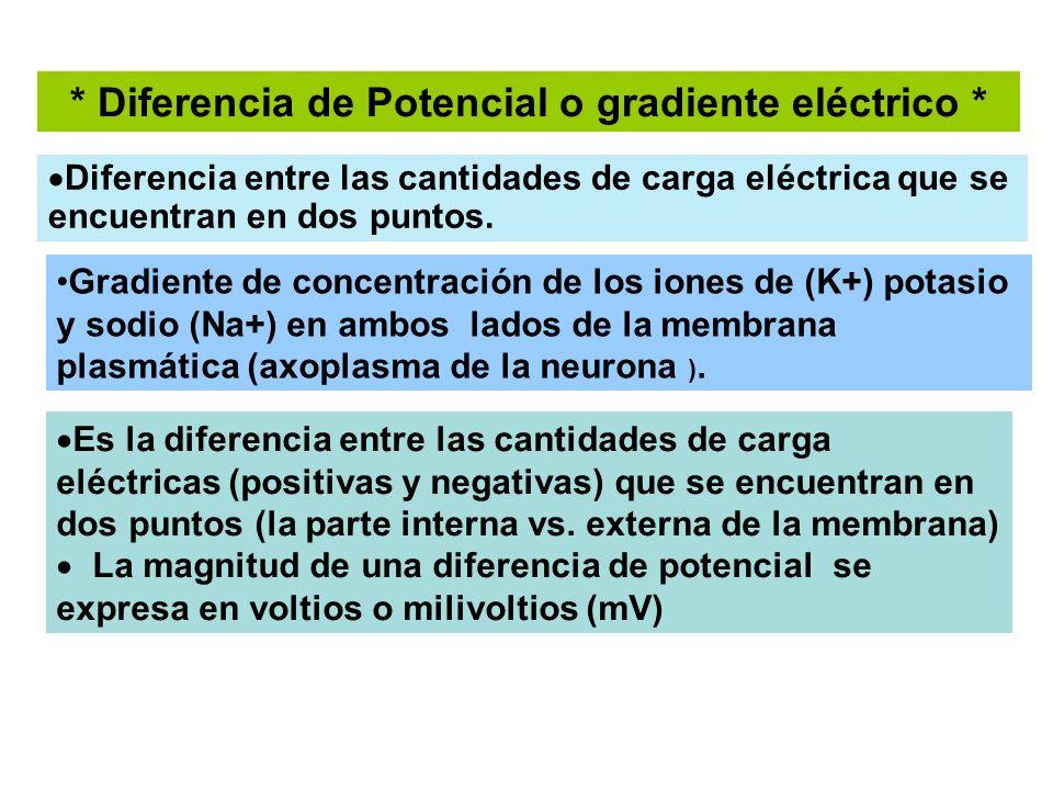 El transporte de los iones Na y K por la M plasmática.