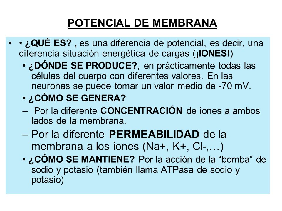 IDEAS BÁSICAS –1.