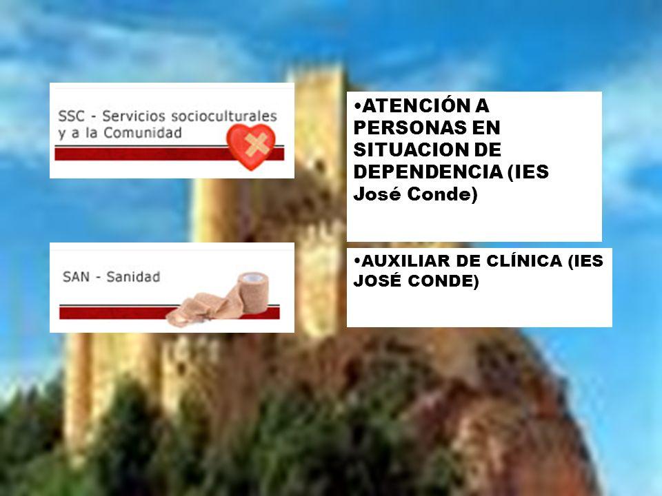 AUXILIAR DE CLÍNICA (IES JOSÉ CONDE) ATENCIÓN A PERSONAS EN SITUACION DE DEPENDENCIA (IES José Conde)