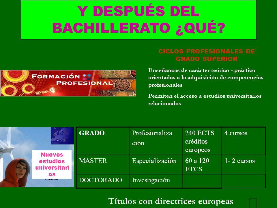 CICLOS PROFESIONALES DE GRADO SUPERIOR Enseñanzas de carácter teórico - práctico orientadas a la adquisición de competencias profesionales Permiten el