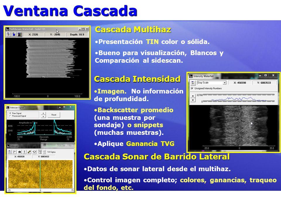 Ventana Cascada Cascada Multihaz Presentación TIN color o sólida. Bueno para visualización, Blancos y Comparación al sidescan. Cascada Intensidad Imag