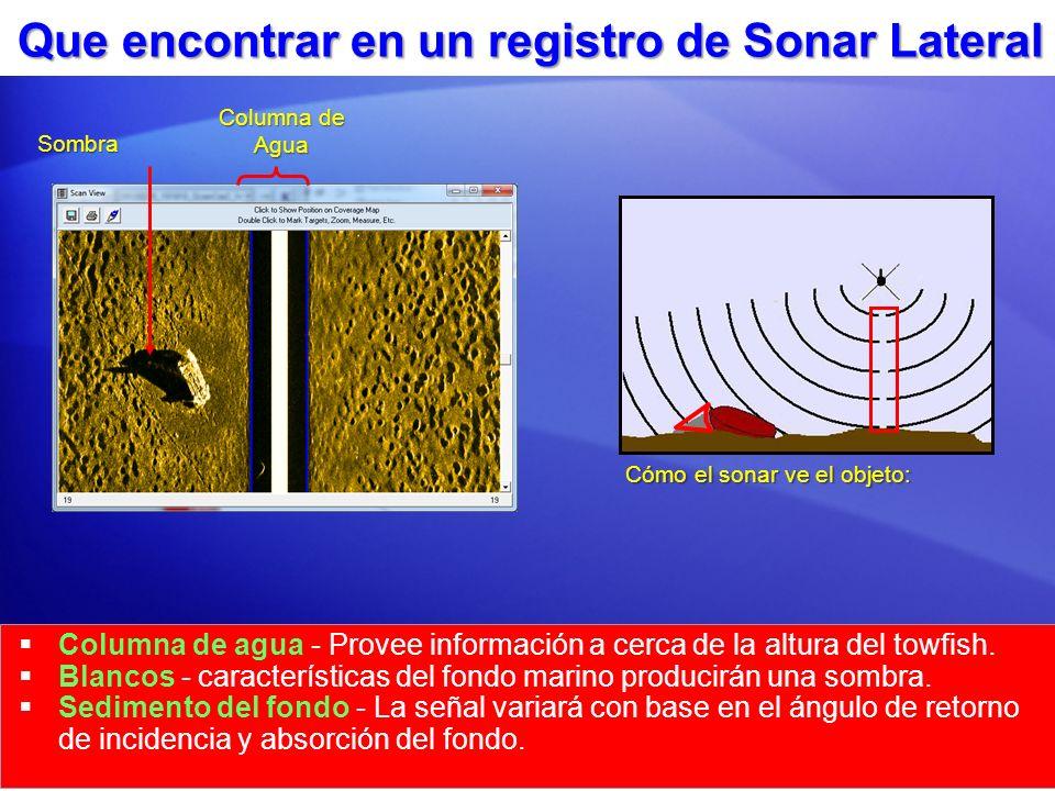 Que encontrar en un registro de Sonar Lateral Columna de agua - Provee información a cerca de la altura del towfish. Blancos - características del fon