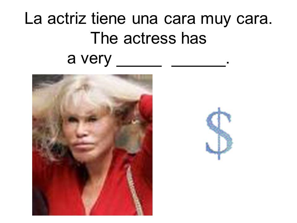 La actriz tiene una cara muy cara. The actress has a very _____ ______.