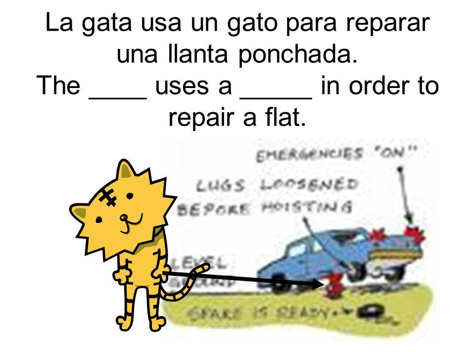 La gata usa un gato para reparar una llanta ponchada.