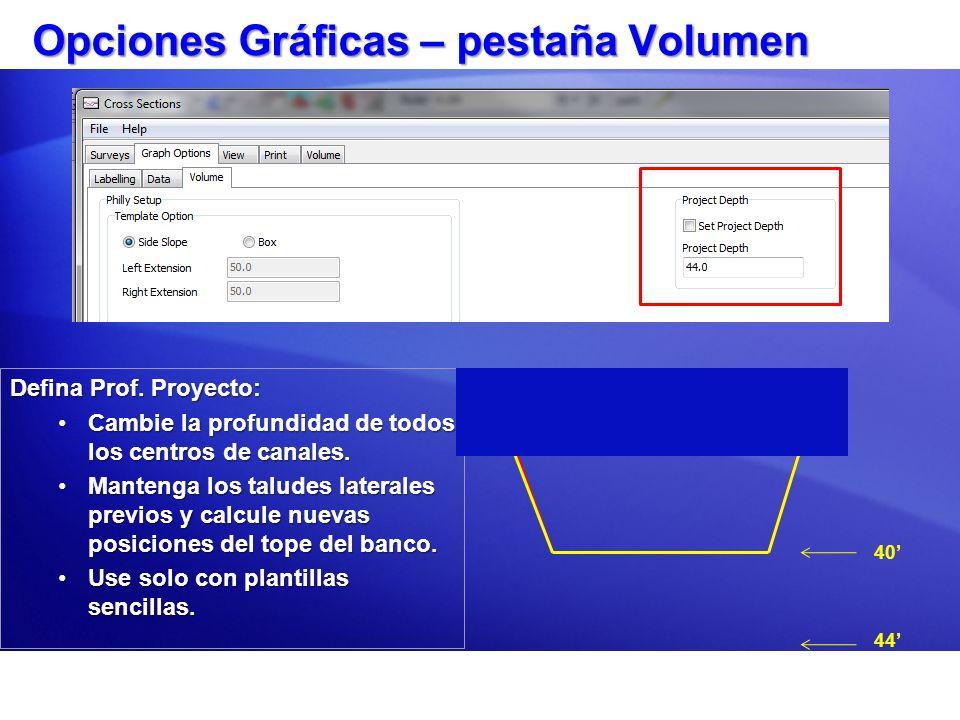 Opciones Gráficas – pestaña Volumen Defina Prof. Proyecto: Cambie la profundidad de todos los centros de canales.Cambie la profundidad de todos los ce