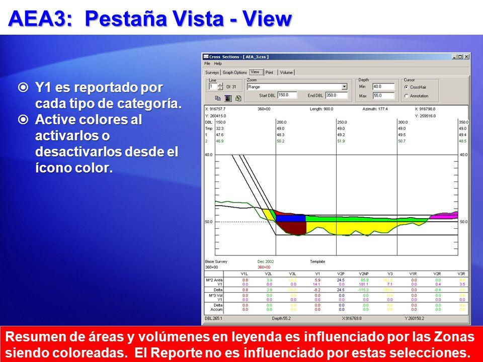AEA3: Pestaña Vista - View Y1 es reportado por cada tipo de categoría. Y1 es reportado por cada tipo de categoría. Active colores al activarlos o desa