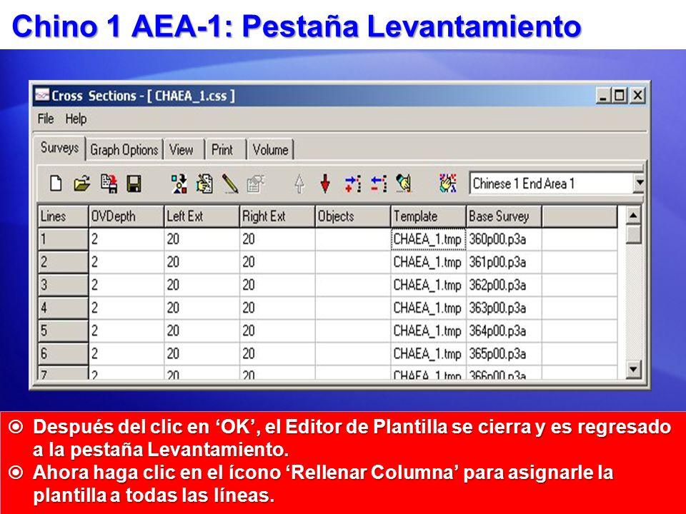 Chino 1 AEA-1: Pestaña Levantamiento Después del clic en OK, el Editor de Plantilla se cierra y es regresado a la pestaña Levantamiento. Después del c