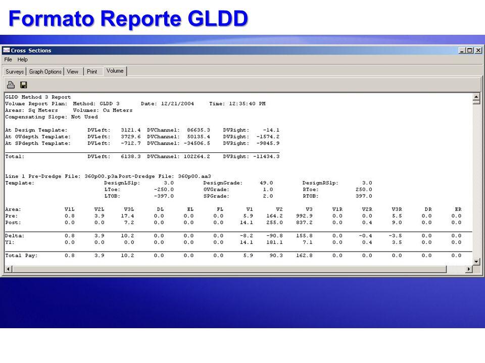 Formato Reporte GLDD